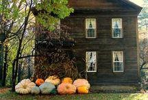 Boo! / halloween / by Joy Fisher