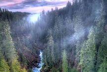 Destination Pacific Northwest.