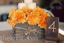 Wedding: Dinh Oct 2014 / Inspiration for Amelia & Son.  / by Lindsey Murray