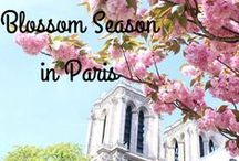 Paris holds the key to your heart / And all of Paris plays a part...