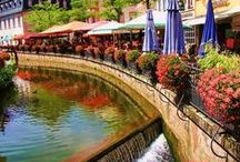 France, French, Paris, Provence & more France scenes / I dream of France. Walking the streets and gardens of Paris, of Provence with the light and heat, the markets smelling of fresh basil, small goats cheeses in vine leaves, wine and bread. / by Heidi Samuel