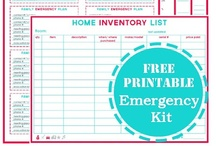 Organize/Calendars/Printables / by Shaina Mart