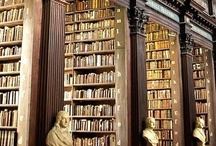 public, library / Beautiful public libraries throughout the world.  I wish I could visit them all. / by Mary Marcotte