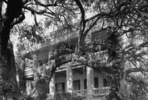 Southern, architecture / Iconic homes of the Old South--beautiful, stately, and serene.