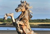 driftwood / by Lisa Kepler