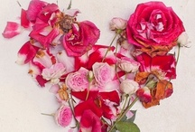 Flower Love / by Deanne Kalda