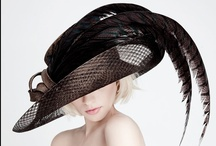 ~ for my love of hats ~ / ~ my mother always said I've got a hat face ~~ (jenny eclair) ~     / by Jewel Tillotson