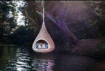 Dream Home / by Tasha Epp