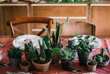 Nice ideas for the home / by Hanneke | Oh beautiful world