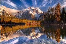 Reflection / by Deni Rosenberry