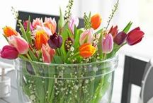 Spring Things!