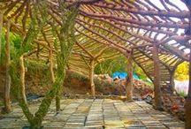 DollHouse: Woodkin Habitats / by Sacred Fox