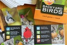 Homeschool Ornithology Unit / A study of Birds, Nests and Eggs / by Amie Lewis