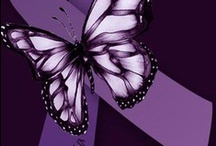 Lupus & Fibromyalgia / I was diagnosed with lupus in December 2012 & fibromyalgia in January 2014. / by Crissy Lambert