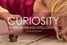 """Curiosity (theme-based ministry) / """"What does it mean to live a life of Curiosity?"""" Unitarian Universalist Theme-Based Ministry February 2015"""