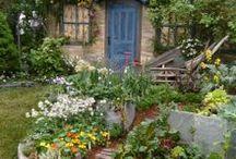 Garden / by Julie Hunter