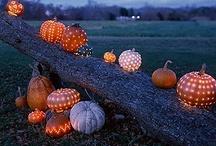 Fall Holidays: Halloween & Thanksgiving
