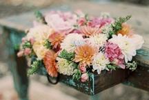 party/wedding stuff