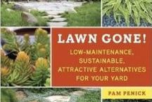 Garden Ideas / Ideas for natural gardening, edible gardening, gardening for nature, garden design, garden projects, bird gardening, you name it.