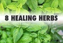 Home-eopath medicine Natural health / Home Remedies Herbs health tips