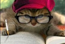 (People & Pets) Caught Reading