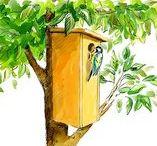 Maisons pour oiseaux / Nos petits amis auront bientôt besoin de vous, alors au travail et bon courage !