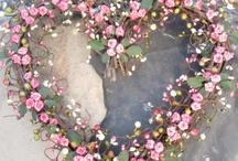 Crafts - Wall & Door Wreaths / by Emma Clarke