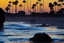 California Dreaming / by Deb Brenner