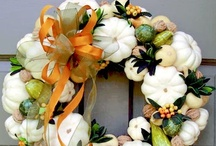 Celebrate: Halloween/Thanksgiving/Fall Ideas / by Kate Portele Moore