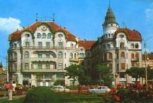 transylvanian