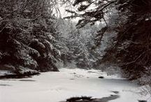 Winter Wonderland / Quietness and Solitude. A Time of Rest.