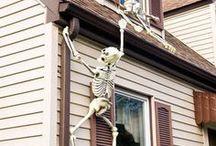 Halloween Decorating / by Kristen Burnett