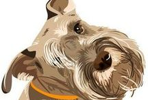 Animals / From Schnauzers to Elephants, this board is all about animals! Tips, Tricks, and cute pics!