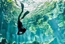 Water Worlds / by Elizabeth Grantham