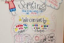 Categorizing/Sorting