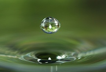 Liquid Loveliness / beauty in water drops, stop motion, refractions, reflections / by Nancy Sproull