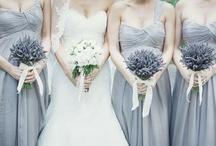 Lavender Weddings / by Idojour