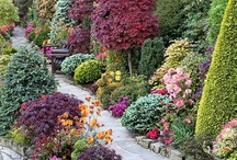Botanical Garden / by Tina Fichtel