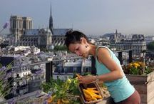 Growing Food - Urban Style