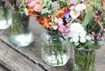 Fleur / Flowers / by Mia Church