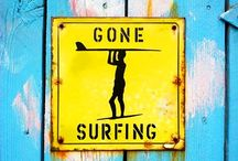 Gone Surfin' / Obsessed... in a good way.  / by Dr Alexandra Brooks