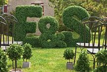 Garden & Outdoor Ideas / by Elissa
