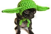 Crochet and Knit / by Nancy Miller