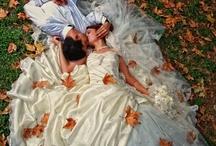 Weddings / by Melanie Stratton