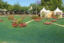 Fürstliches Gartenfest 2014