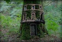 Tree House Living / by Christina Scott