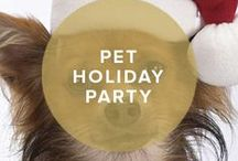 Holiday Party for your Pet / by InvitationBox
