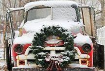 Christmas Decor / by Lillian Ranauro