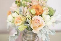 Flowers / by Lillian Ranauro