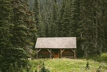 Cabin in the Woods / by Lillian Ranauro